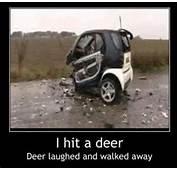 Funny Car Crash  I Hit A Deer Dirty Adult Jokes Memes