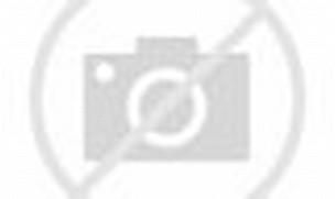 Download image Baju Pesta Dian Pelangi Genuardis Portal PC, Android ...