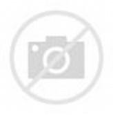 Contoh Denah Rumah Minimalis Design