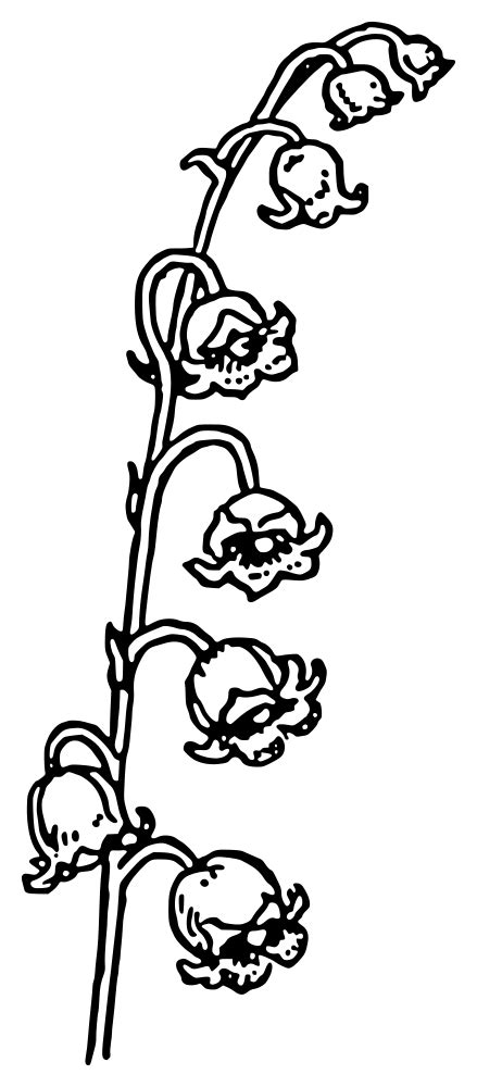 OnlineLabels Clip Art - Lily Of The Valley