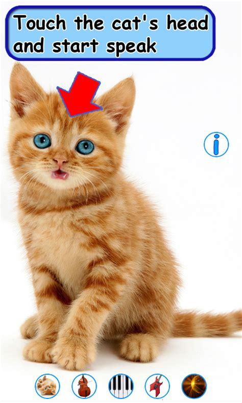 wallpaper talking cat talking dancing cat 1mobile com