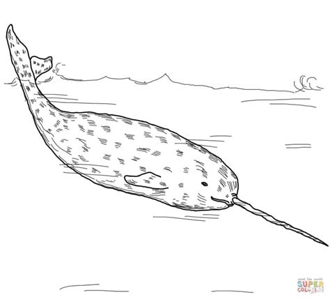 coloring pages of narwhals get this narwhal coloring pages kids printable uvt58