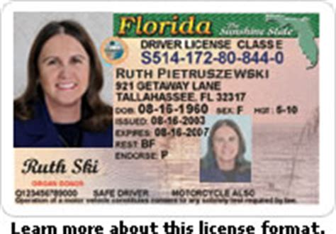 Florida Drivers License Office by Martin County Tax Collector
