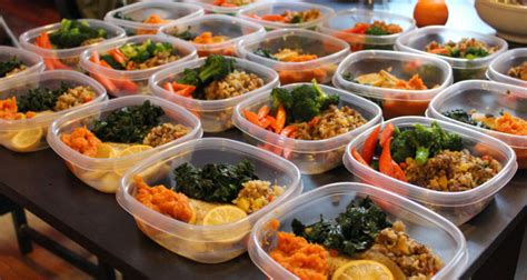best meal prep bags meal management bag reviews 2018