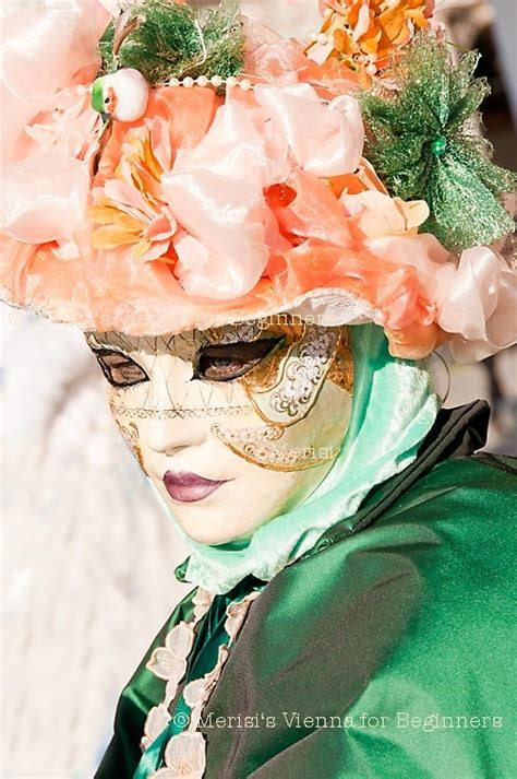 Masker Vienna Di Guardian 17 best images about carnival mask costumes on