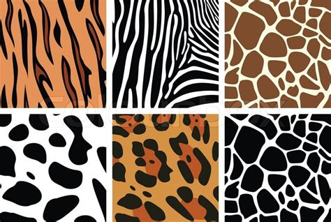 animal skin patterns stock photo images 20 829 animal skin patterns royalty free pictures and vector animal skin textures of tiger zebra giraffe leopard and cow stock vector colourbox