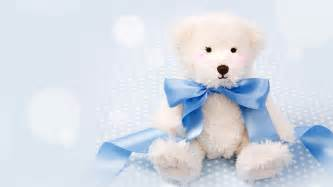 Smart Looking Teddy Bear Wallpapers Life Quotes 1600 215 1200