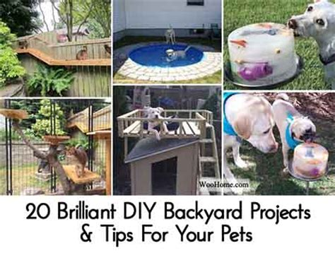 good backyard pets 20 brilliant diy backyard projects tips for your pets