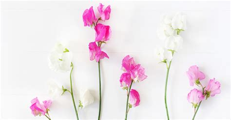 real wedding flowers artificial vs real wedding flowers which is best