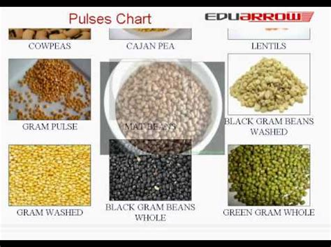 whole grains names in tamil pulses chart