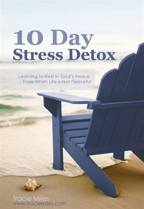 the 10 day career cleanse find your zen at work books 10 tips for finding calm in your chaos tracie