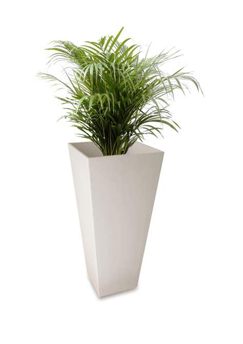 Artstone Planters Uk by White Ella Artstone Vase Planter With Drainage