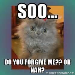 Forgive Me Meme - forgive me meme 28 images shrek cat meme imgflip i m