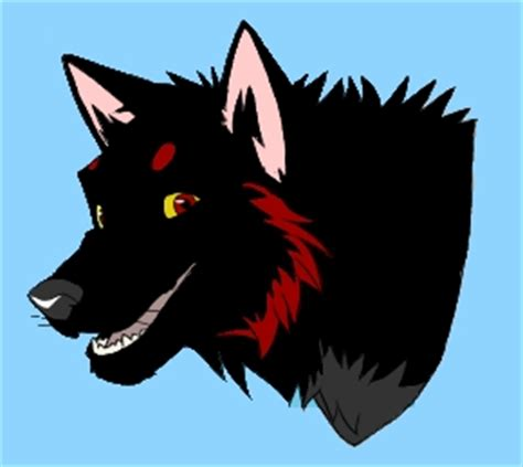 5 11 Black Wolf Black and black wolf 5 by faolanshewolfgold on deviantart