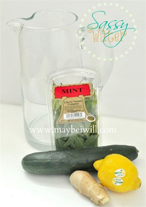 Cara Membuat Sassy Water Detox by 1000 Ideas About Sassy Water On Water Recipes