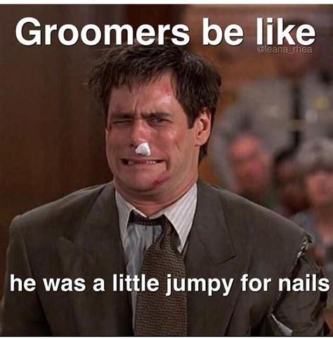 Dog Groomer Meme - repinned more groomer humor grooming pinterest