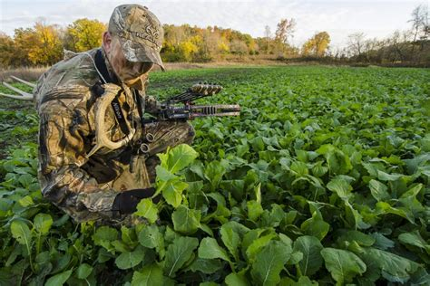 Wildlife Food Plot Planters by What To Plant In Small Food Plots Legendary Whitetails