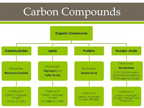 carbohydrates organic compound carbon compounds section ppt
