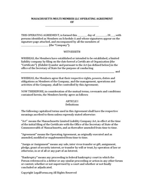 llc bylaws template multi member llc operating agreement template