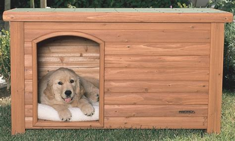 how to build a nice dog house how to build an insulated dog house igloo dog houses