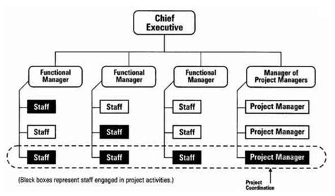 project management diagram types home of project manager 187 three types of project