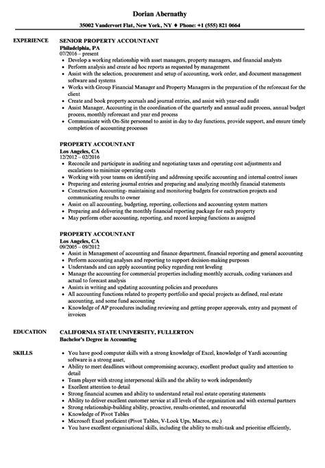 property accountant resume sles velvet