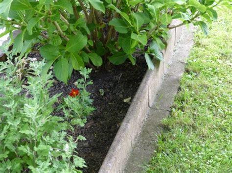 Garten Randsteine by Randsteine Im Garten Setzen Nat 252 Rliche Akzente