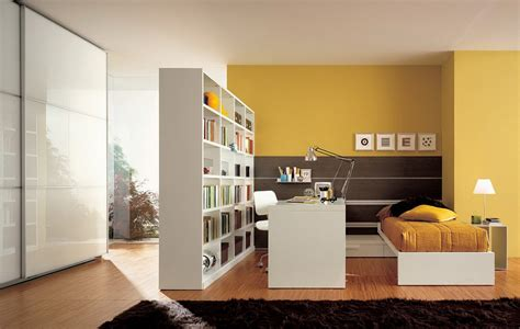 Room Divider Ideas For Bedroom Ideas For