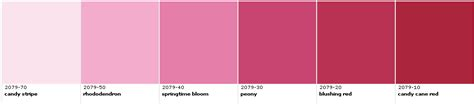 color types types of pink colors pictures to pin on pinsdaddy