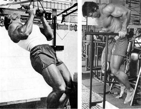arnold schwarzenegger bench press workout arnold s 500 rep bodyweight workout routine forestvance com