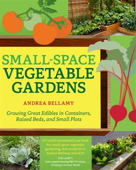 vegetable garden in small space small space vegetable gardens hgtv