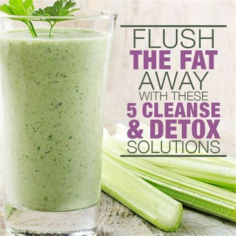 Detox Soups And Smoothies by 5 Flushing And Cleanse Solutions Celery Cilantro