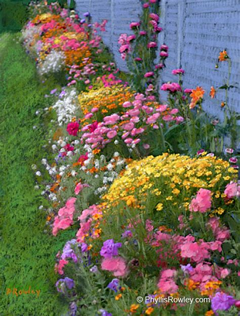 cottage garden flowers maine