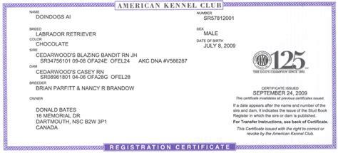 akc registration doindogs ai cgn