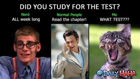 Memes Test - funny quotes about studying quotesgram