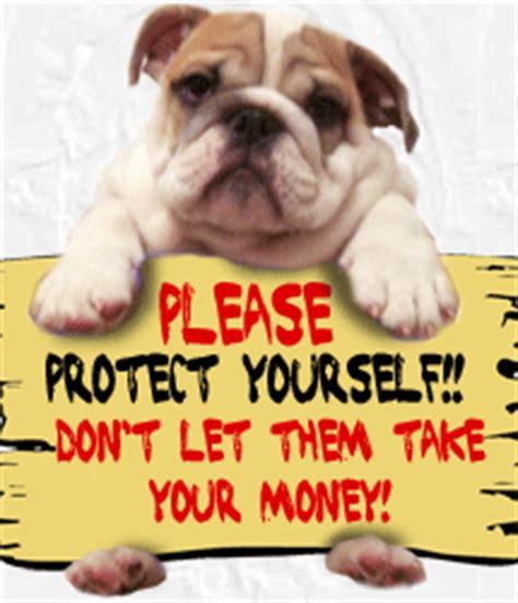 puppy scams chbulldogs scam alert