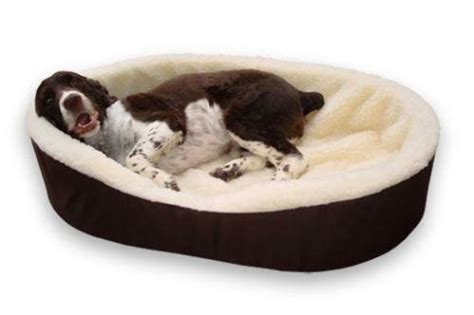 Beds For Large Dogs by Large Bed Ebay