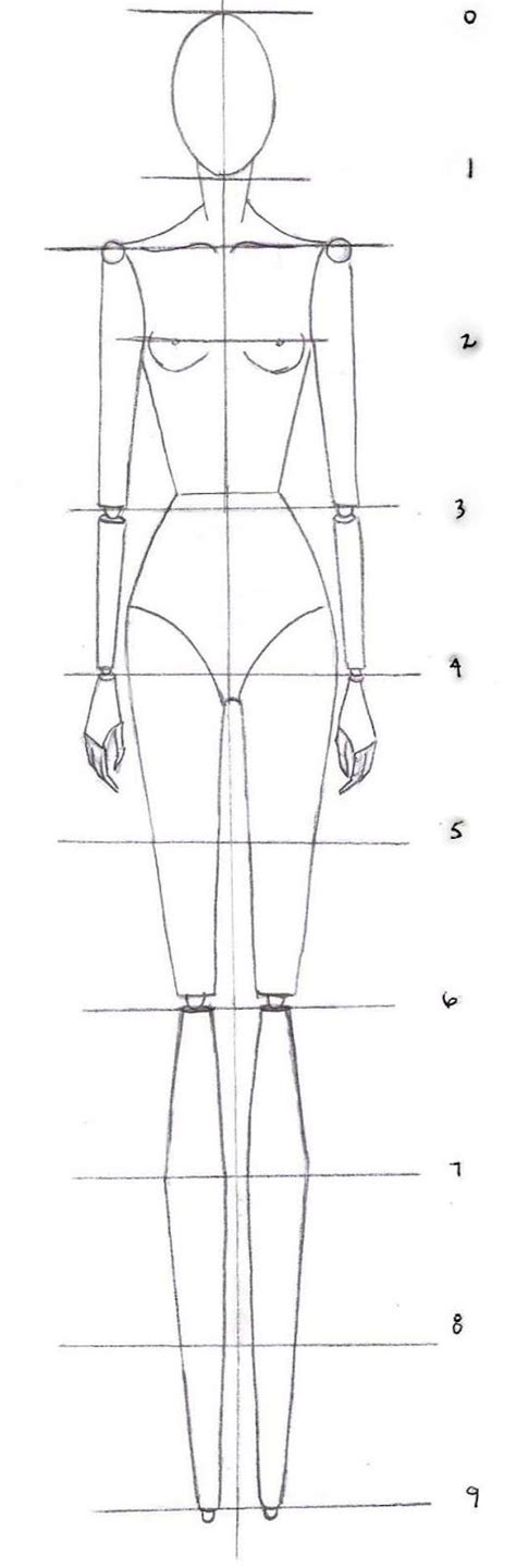 9 heads a guide to drawing fashion 3rd edition nancy how to drawing the proportions of a fashion croquis