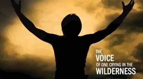 a voice in the wilderness the ministry of the baptist books devotional thoughts on matthew 3 1 17 toward a sane faith