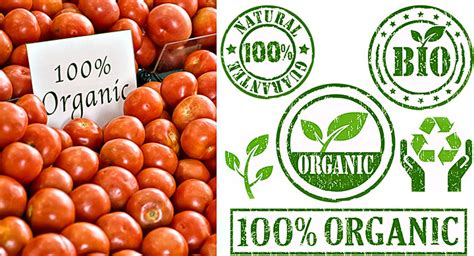 alimento organico diferencias entre alimentos org 225 nicos y naturales