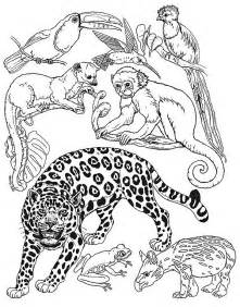 Small Animal Coloring Pages umbrella mural small animals