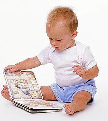 the babys lap book pin by emilie smilie on toddler vocabulary