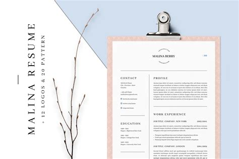Resume 3 Pages by Malina Resume 3 Pages Bonus By Agatacreate