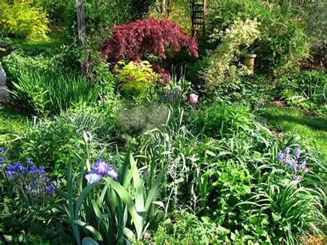 creating a cottage garden tips for designing an cottage garden yard ideas