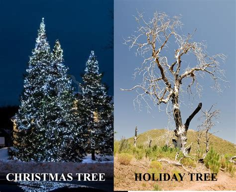 the meaning behind the holiday tree granitegrok