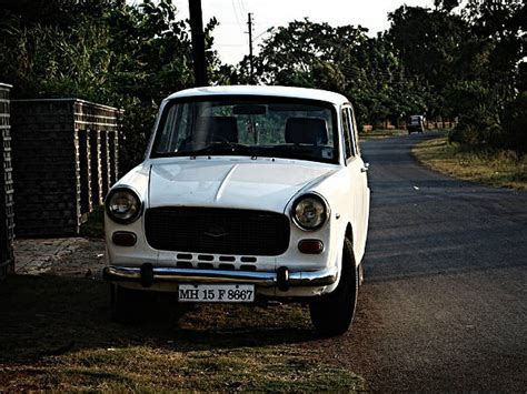 datsun india wiki the premier padmini a tribute to our pal