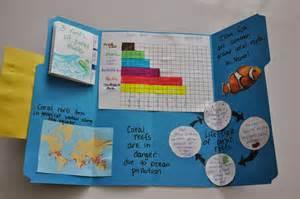 the elementary professor create your own lapbooks with