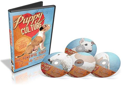 puppy culture puppy culture the powerful 12 weeks that can shape your puppy s future