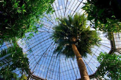 palm house picture of royal botanic garden edinburgh edinburgh tripadvisor