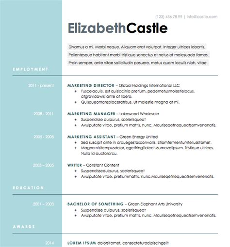 resume sided free resume blue side microsoft word format resumes microsoft word